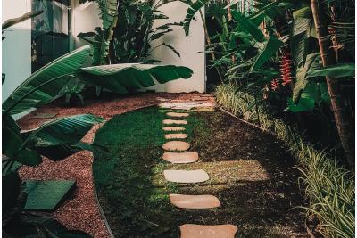 Dalele individuale și gazonul contemporan. Sugestii pentru o vară impecabilă în grădina ta