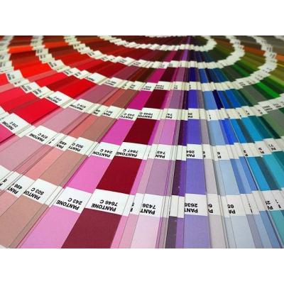 Integrarea cromatica a pavajului in arhitectura casei