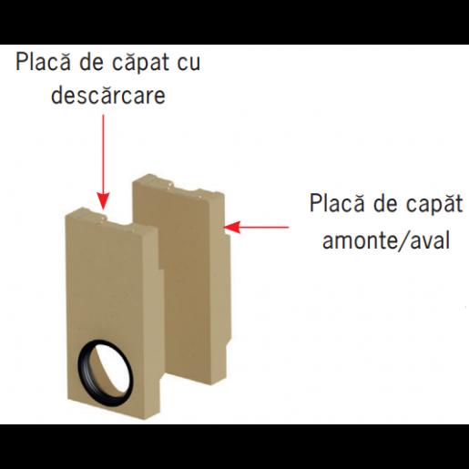 Placa de capat Monoblock RD 100 cu garnitura