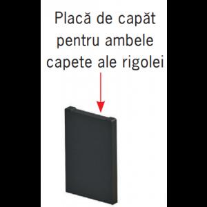 Placa de capat Monoblock PD 150 pentru ambele capete