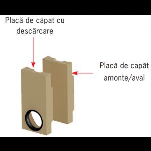 Placa de capat Monoblock RD 100 aval