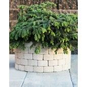 Jardiniera Ronda 54x54x32 cm