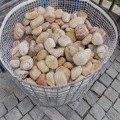Piatra Rotunjita Politiko 6-10 cm, Big Bag 1500 kg