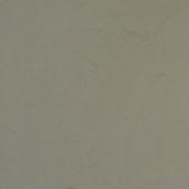 Treapta Traverstone 60x35x3 cm